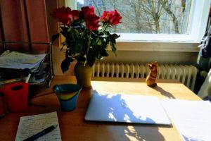 Ksenia Meshkovas Schreibtisch